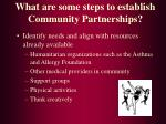 what are some steps to establish community partnerships