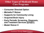 other types of medicaid home care programs