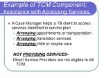 example of tcm component assistance with accessing services