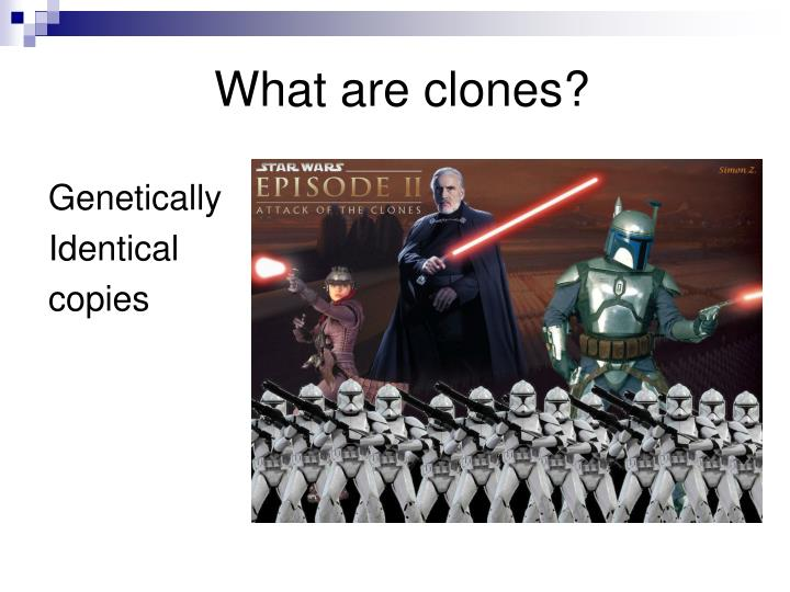 What are clones