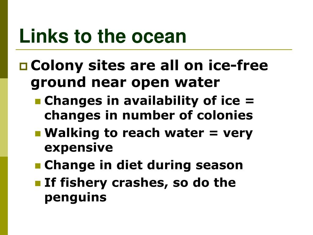 Links to the ocean