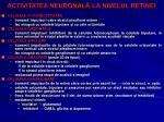 activitatea neuronal la nivelul retinei