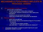 mecanismele fotochimice implicate n procesul vederii17