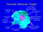 overview molecular targets