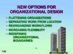 new options for organizational design