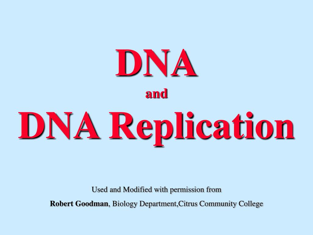 dna and dna replication l.