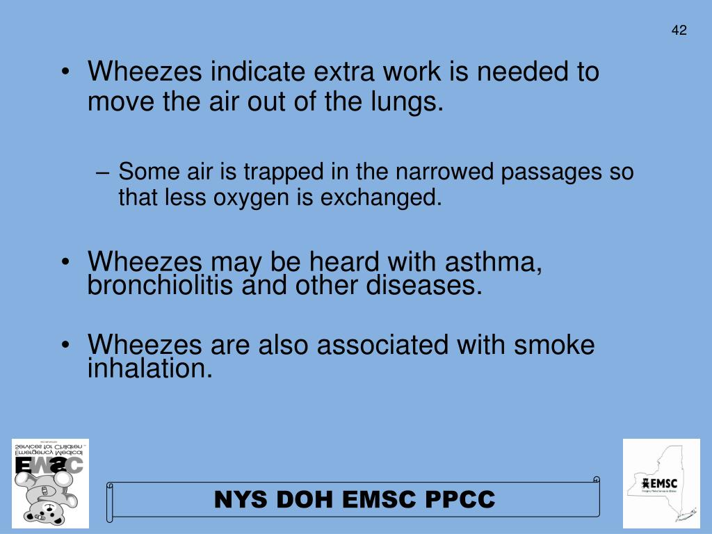 Wheezes indicate extra work is needed to move the air out of the lungs.