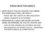 firm boundaries10