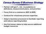 census bureau e business strategy
