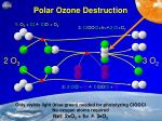 polar ozone destruction