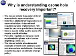 why is understanding ozone hole recovery important