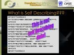 what is self describing