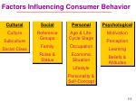 factors influencing consumer behavior