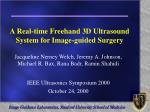a real time freehand 3d ultrasound system for image guided surgery