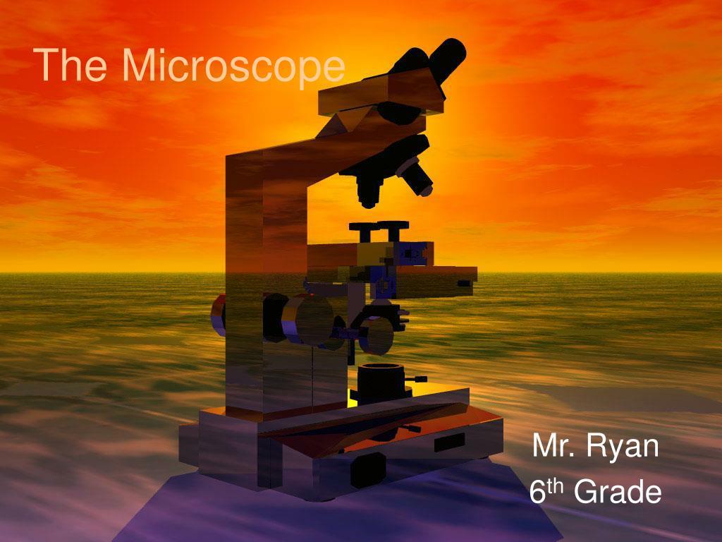 the microscope l.