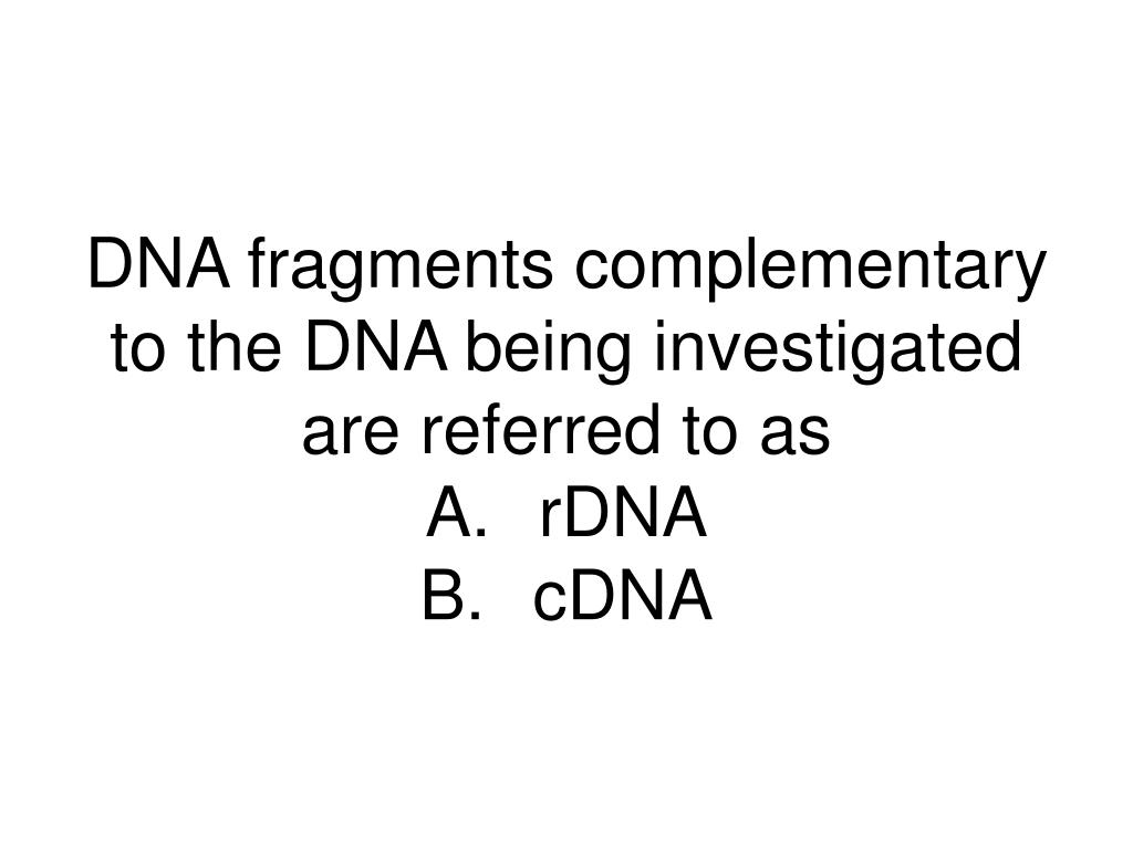 DNA fragments complementary to the DNA being investigated are referred to as
