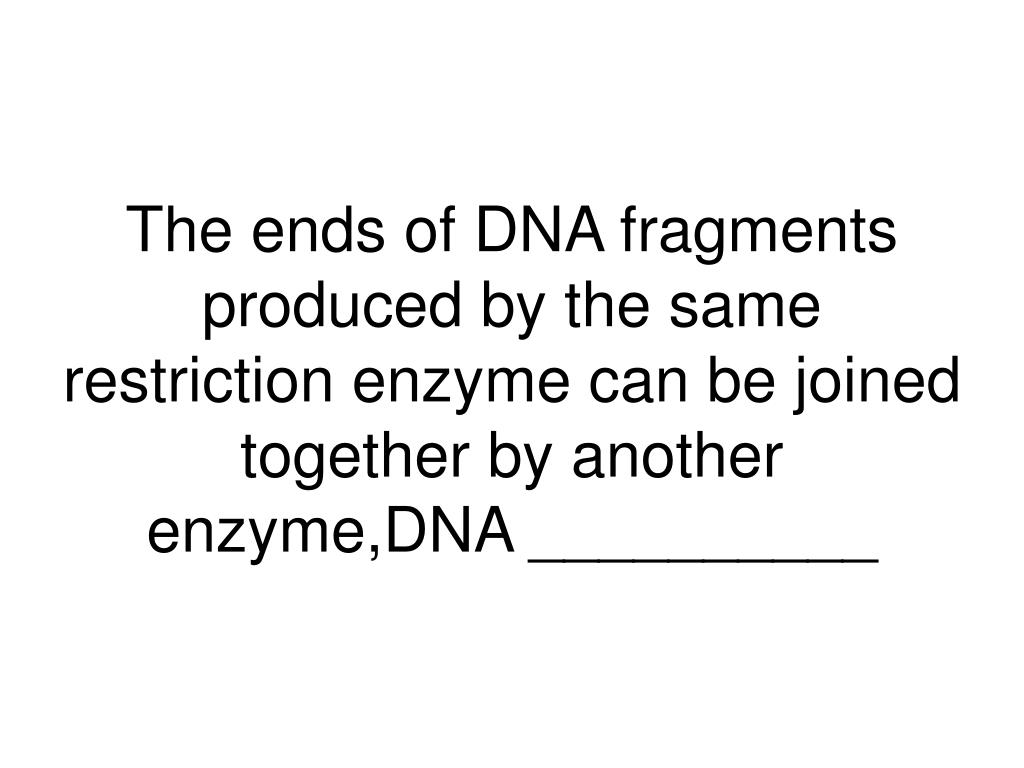 The ends of DNA fragments produced by the same restriction enzyme can be joined together by another enzyme,DNA __________