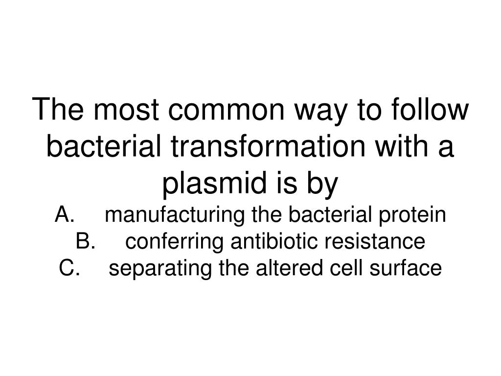 The most common way to follow bacterial transformation with a plasmid is by