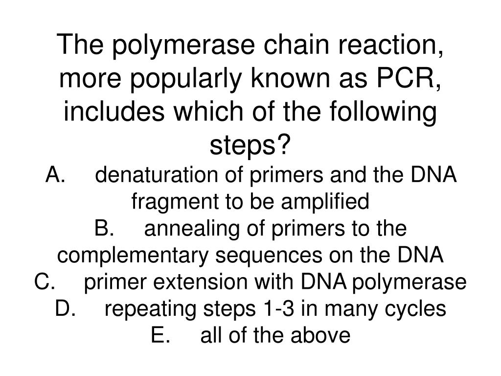 The polymerase chain reaction, more popularly known as PCR, includes which of the following steps?
