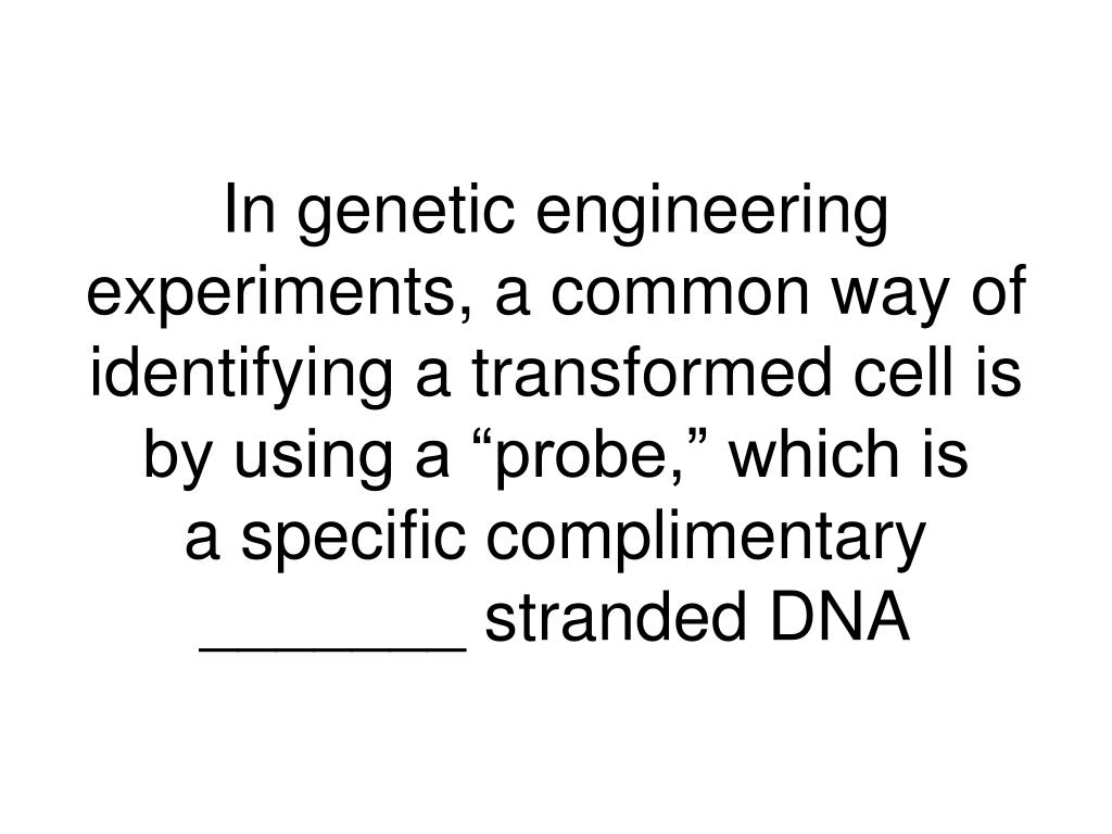 """In genetic engineering experiments, a common way of identifying a transformed cell is by using a """"probe,"""" which is"""