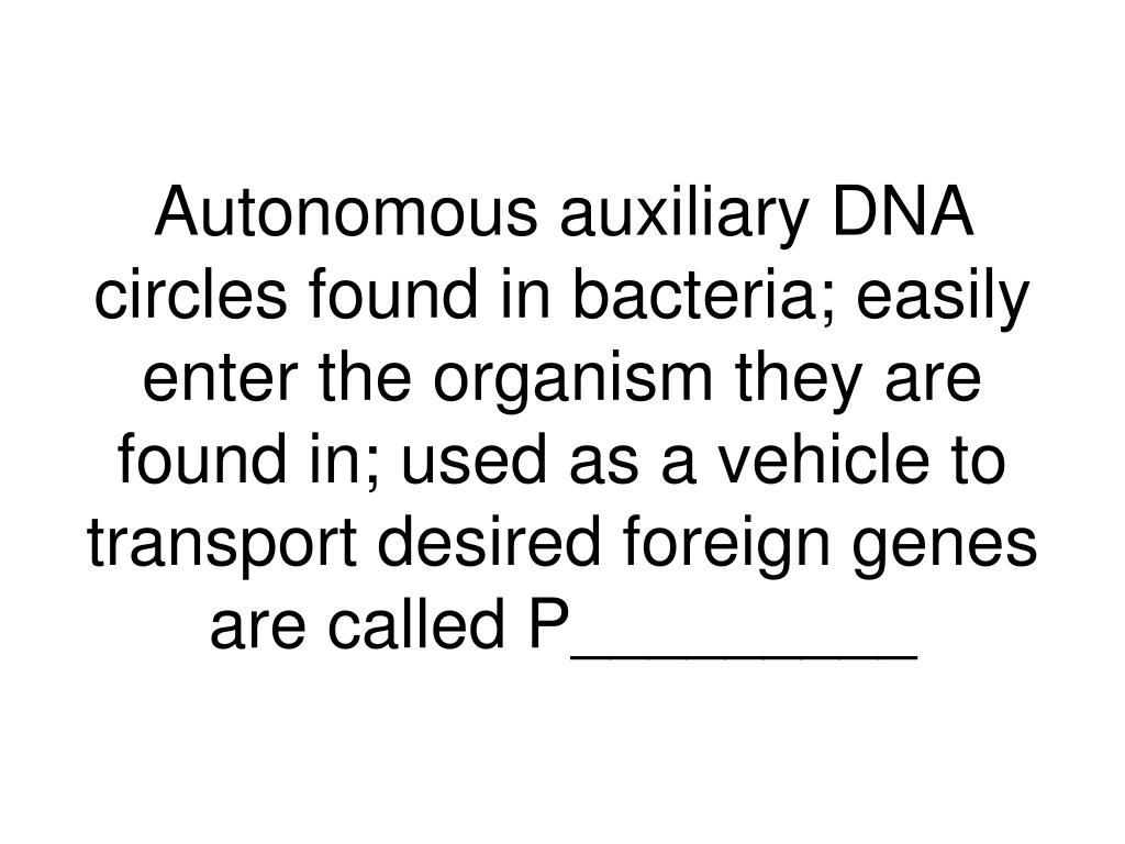 Autonomous auxiliary DNA circles found in bacteria; easily enter the organism they are found in; used as a vehicle to transport desired foreign genes are called P_________