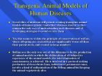 transgenic animal models of human diseases