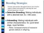 breeding strategies