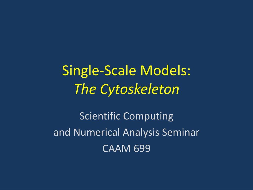 single scale models the cytoskeleton l.