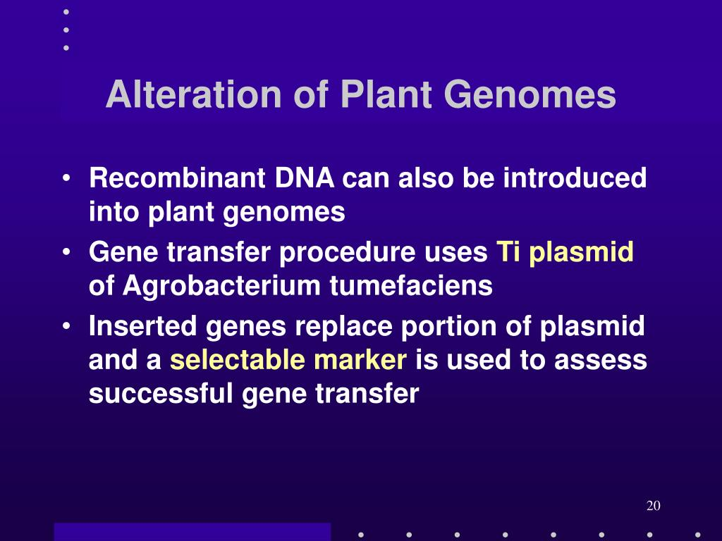 Alteration of Plant Genomes