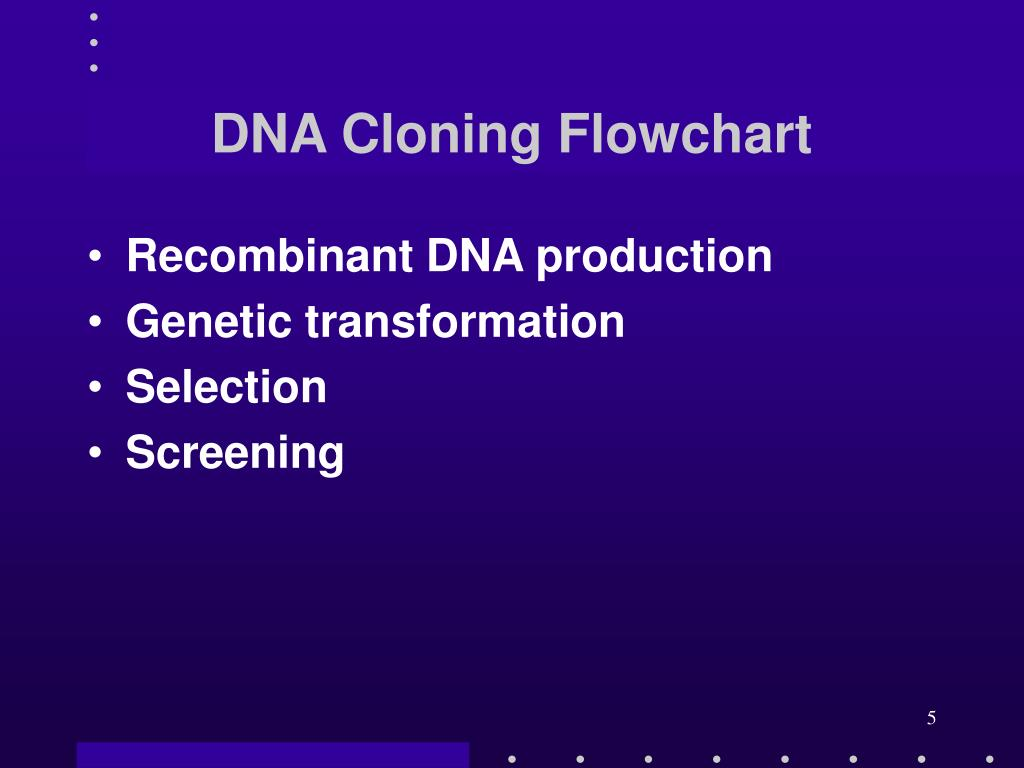 DNA Cloning Flowchart