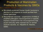 production of mammalian products vaccines by gmos