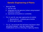 genetic engineering of plants