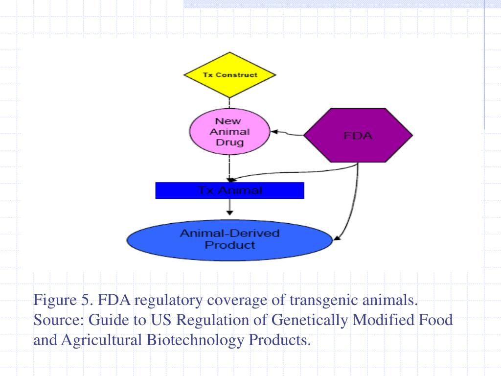 Figure 5. FDA regulatory coverage of transgenic animals.