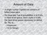 amount of data