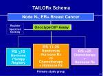 tailorx schema
