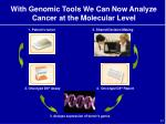 with genomic tools we can now analyze cancer at the molecular level