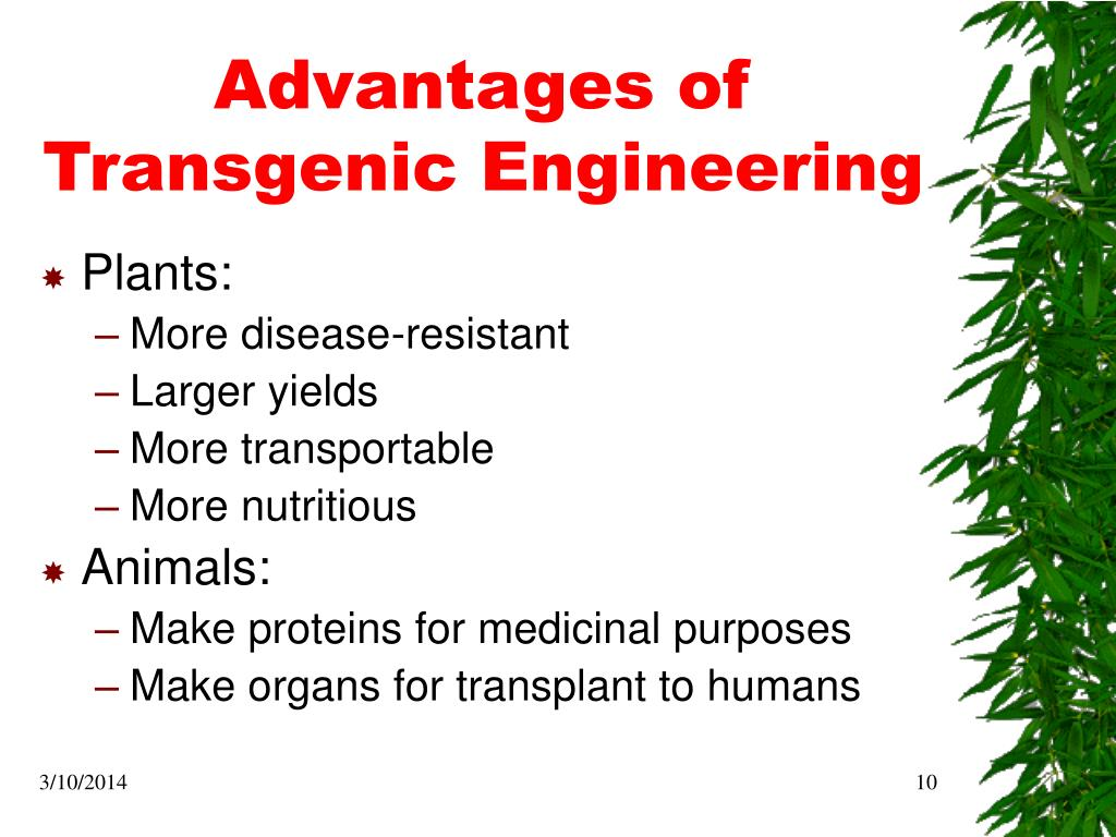 Advantages of Transgenic Engineering