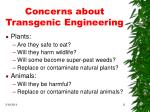 concerns about transgenic engineering