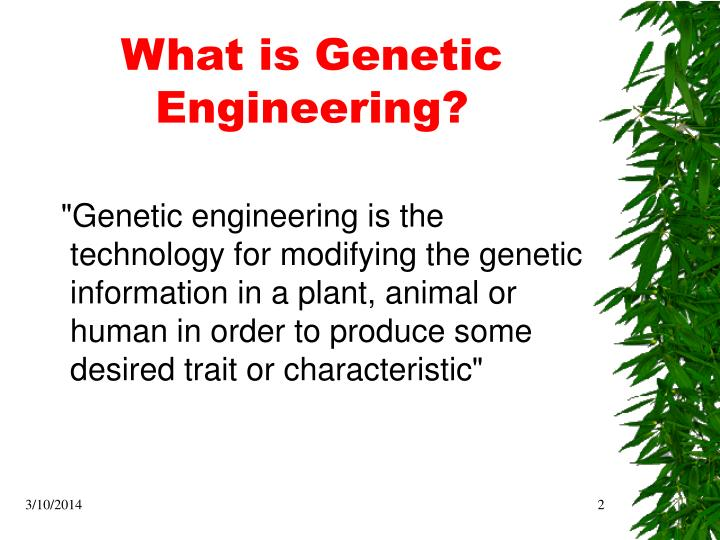 What is genetic engineering
