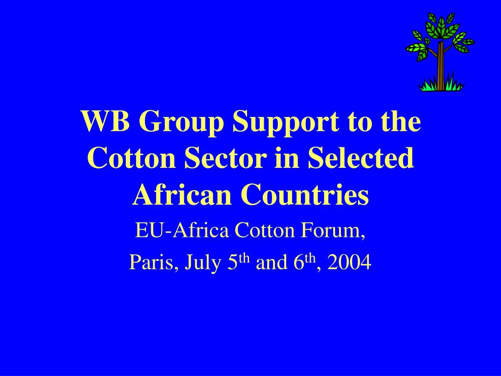 wb group support to the cotton sector in selected african countries l.