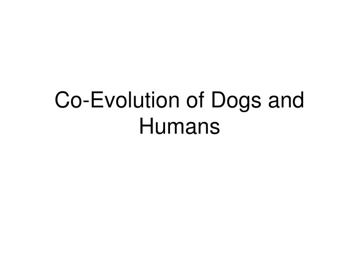 co evolution of dogs and humans n.