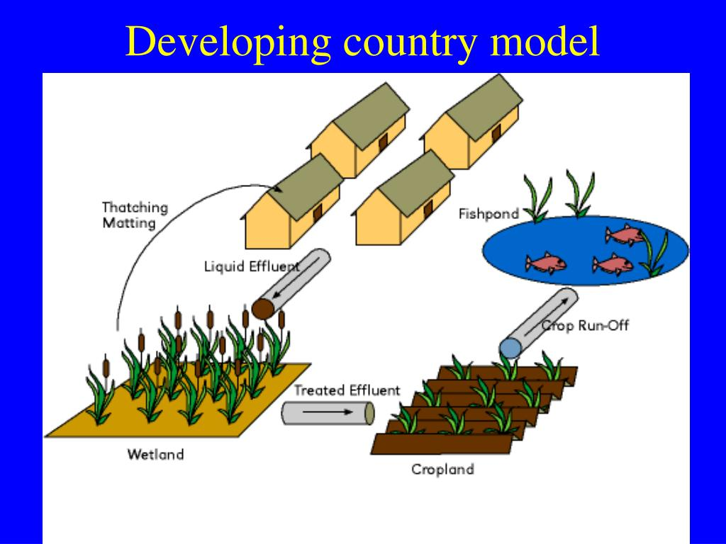 Developing country model