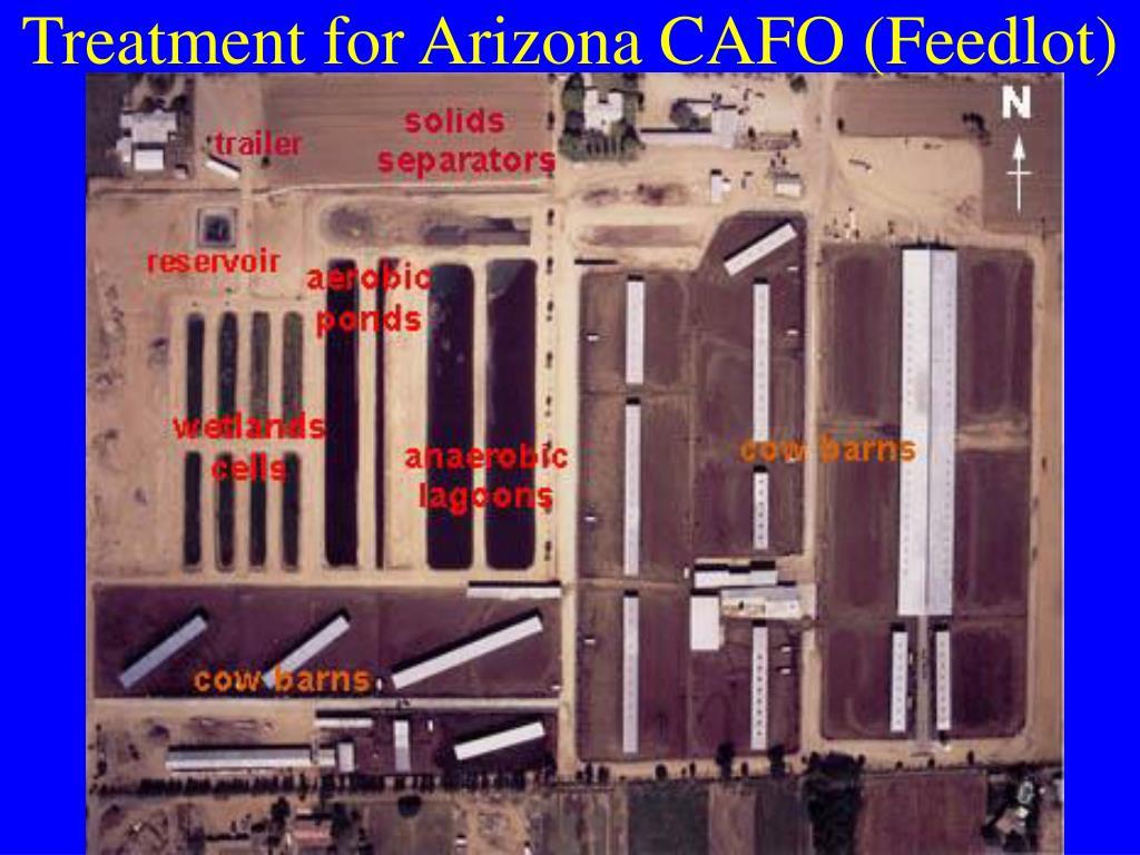 Treatment for Arizona CAFO (Feedlot)