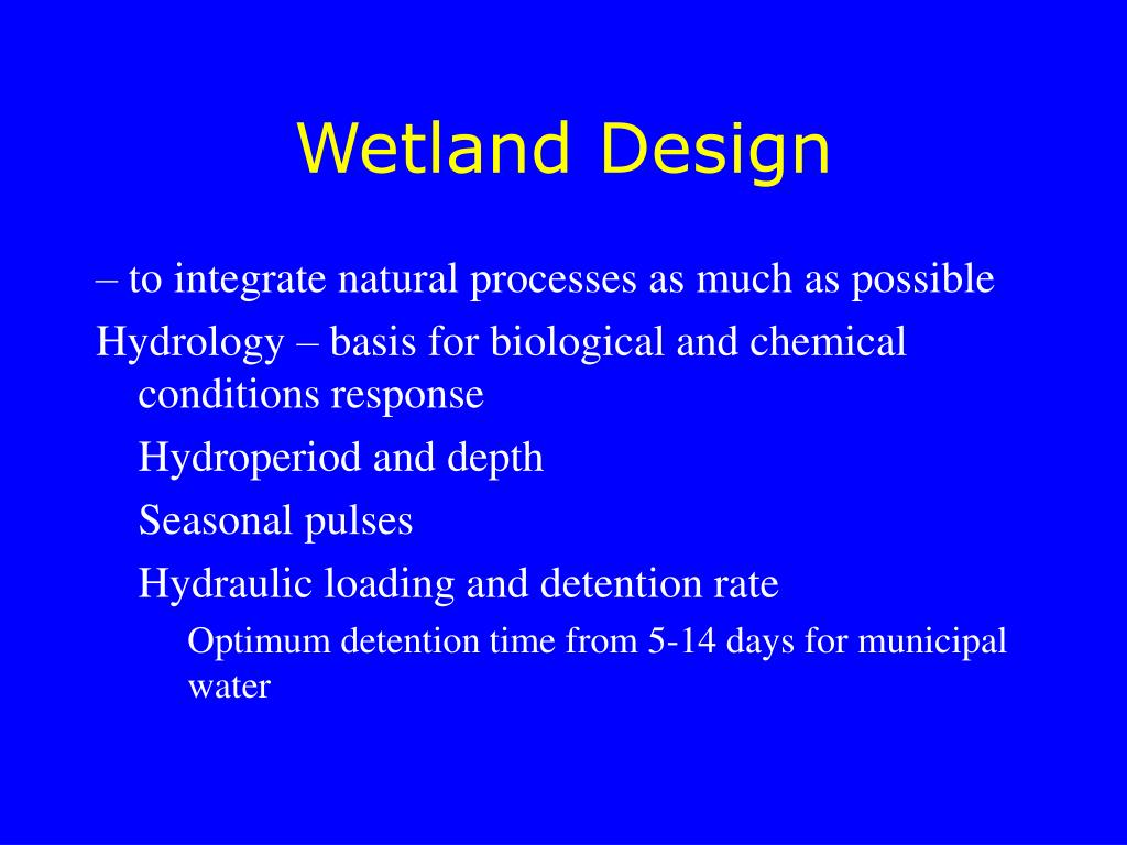 Wetland Design