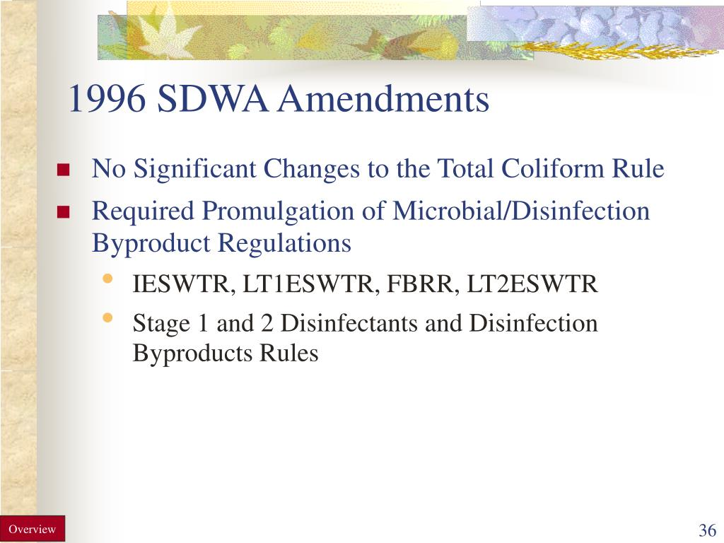 1996 SDWA Amendments