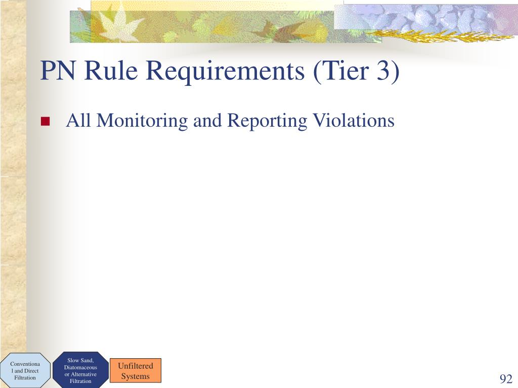 PN Rule Requirements (Tier 3)