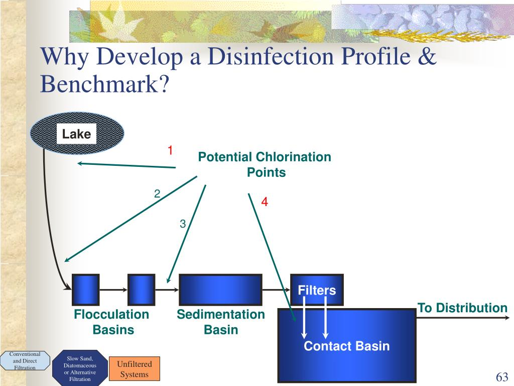 Why Develop a Disinfection Profile & Benchmark?