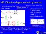 ne director displacement dynamics