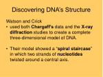 discovering dna s structure18
