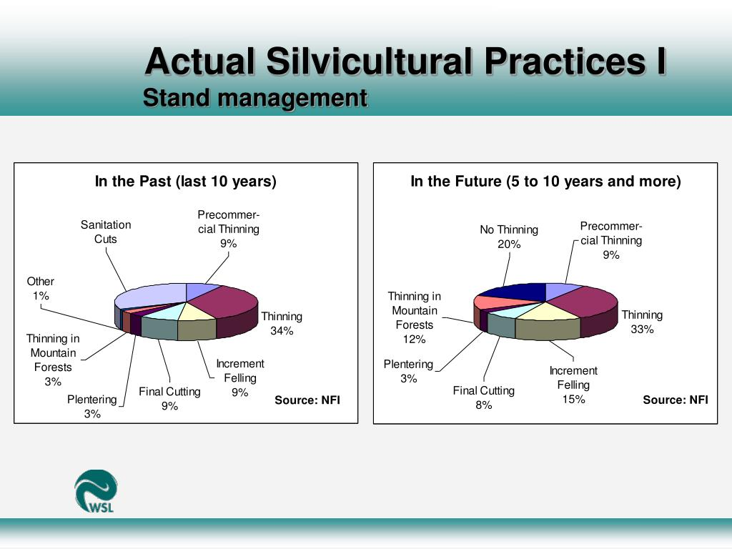 Actual Silvicultural Practices I